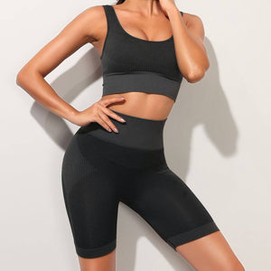 Hummingbird Solid & Striped Seamless Biker Shorts Set - Black comes with a flattering crop tank top sports bra with square neck and low cut back, and a pair of high waisted biker shorts.