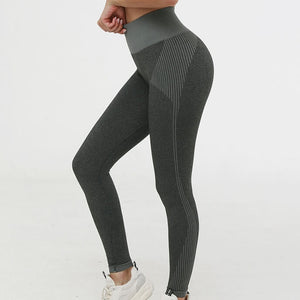 Hummingbird Solid & Striped Seamless Leggings - Dark Grey