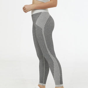Hummingbird Solid & Striped Seamless Leggings - Grey