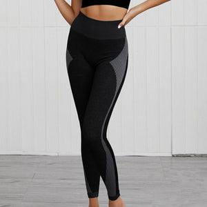 Hummingbird Solid & Striped Seamless Leggings - Black