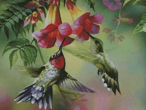 Feeding Hummingbird #2 DIY 5D Diamond Painting Cross Stitch