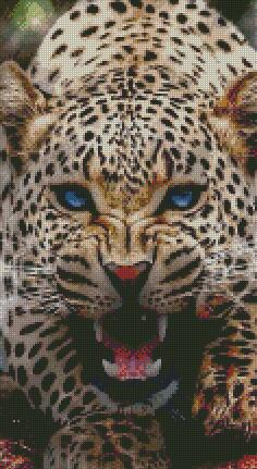 Leopard Blue Eyes DIY 5D Diamond Painting Cross Stitch