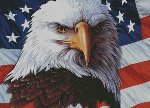 American Eagle #2 DIY 5D Diamond Painting Cross Stitch