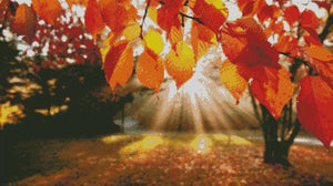 Autumn Sunshine DIY 5D Diamond Painting Cross Stitch