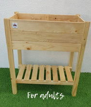 Planter Box Basil - for kids and adults