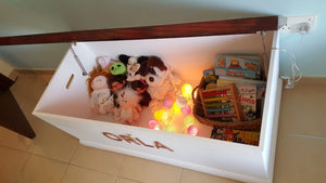 Toy Box Luca