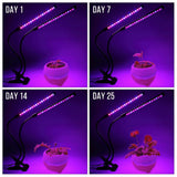Two Heads Timing LED Plant Grow Light