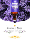 Homasy Lavender Essential Oil, 50ml 100% Pure Essential Oils, Undiluted Aroma Essential Oil, Scented Oils for Diffuser, Humidifier, Massage Blend, Perfect Gifts