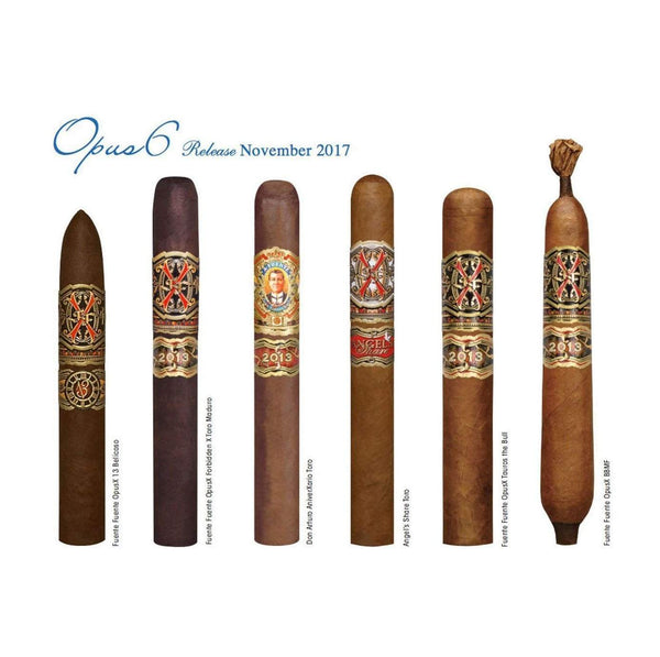 Load image into Gallery viewer, Arturo Fuente Aged Selection 2017 FFOX Opus6 Travel Humidor with Rare Cigars