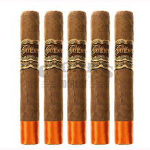 Load image into Gallery viewer, Arturo Fuente Casa Fuente Robusto 5 Pack