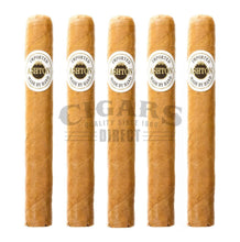 Load image into Gallery viewer, Ashton Classic Monarch 5 Pack