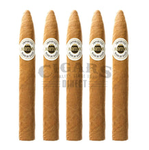 Load image into Gallery viewer, Ashton Classic Sovereign 5 Pack