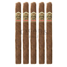 Load image into Gallery viewer, Ashton Vsg Spellbound 5 Pack