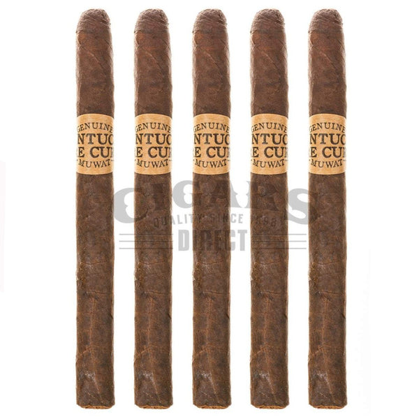 Load image into Gallery viewer, Drew Estate Kentucky Fire Cured Kyotos 5 Pack