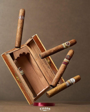 The Padron Collection Maduro Sampler Art Work