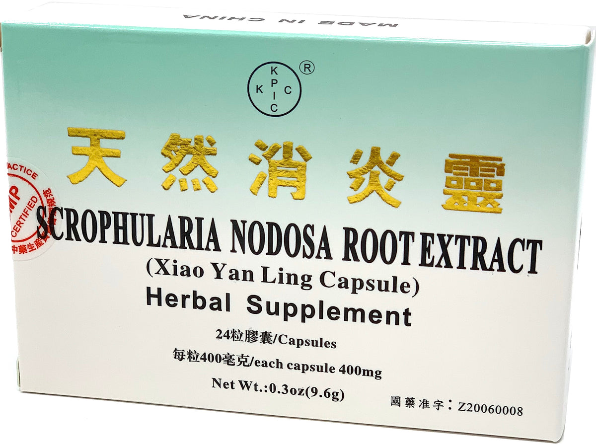 Scrophularia Nodosa Root Extract (Xiao Yan Ling Capsule)