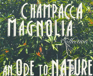 A Royal Magnolia Champacca Body Wash | 250 ml | Anti-oxidant boost and Hydrating