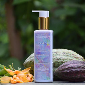 A Royal Magnolia Champacca Shampoo | 250 ml | Cocoa Butter & Safflower Oil | Cleansing & Replenishes