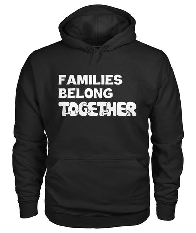 Image of Families Belong Together Hoodie
