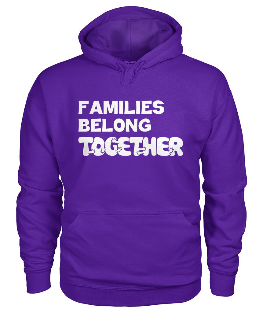 Families Belong Together Hoodie