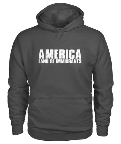 Image of America Land Of Immigrants Hoodie