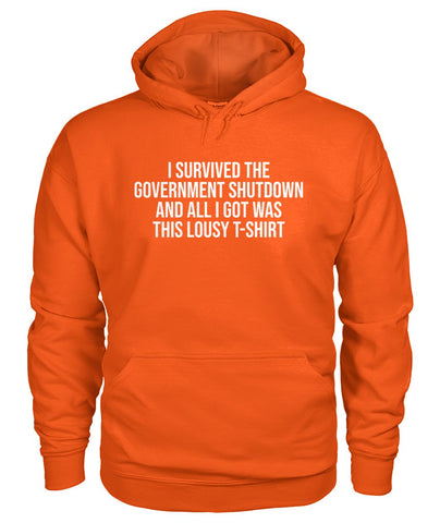 Image of I Survived The Gov. Shutdown Hoodie