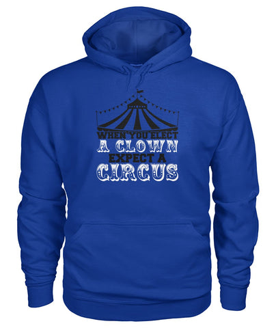 Image of When You Elect A Clown, Expect A Circus Hoodie
