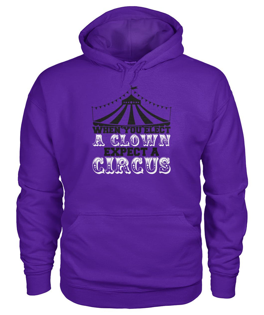 When You Elect A Clown, Expect A Circus Hoodie