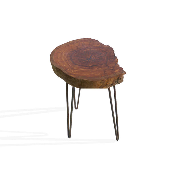 Eucalyptus Wood Table 2