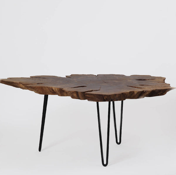 Coffee Table With Local Root Wood