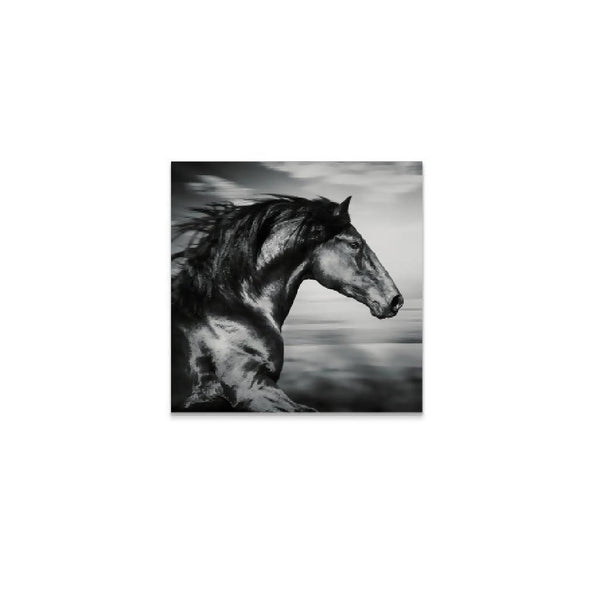 Horse Painting - Black and White