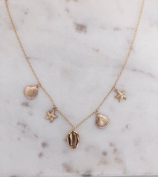 Charmed Shell Necklace