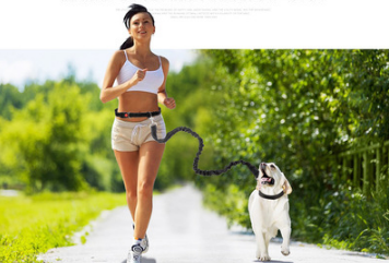 Fast selling new factory fitness belt, nylon dog rope sports pet products, dog running reflex traction rope - adventuresinoutdoorfun.com, Running,