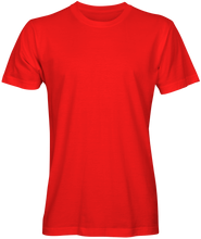 Load image into Gallery viewer, Alstyle Classic T-Shirt