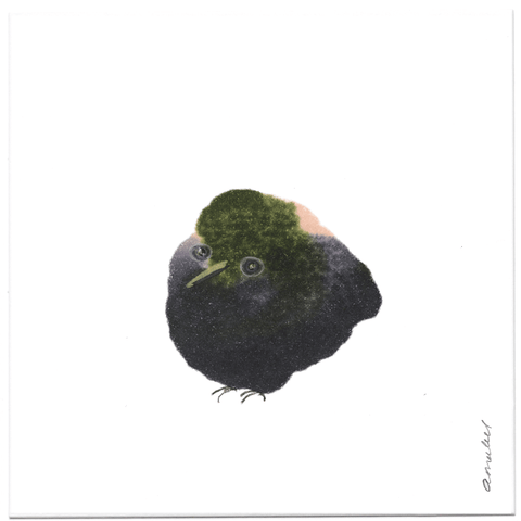 INKDROP BIRD NO.056 - BLACK, DARK GREEN & PINK - ORIGINAL DRAWING