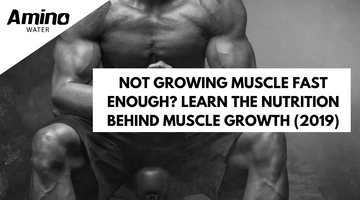 Not Growing Muscle Fast Enough? Learn The Nutrition Behind Muscle Growth (2019)