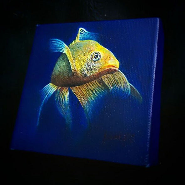 Fancy Goldfish • Painted Acrylics on Canvas