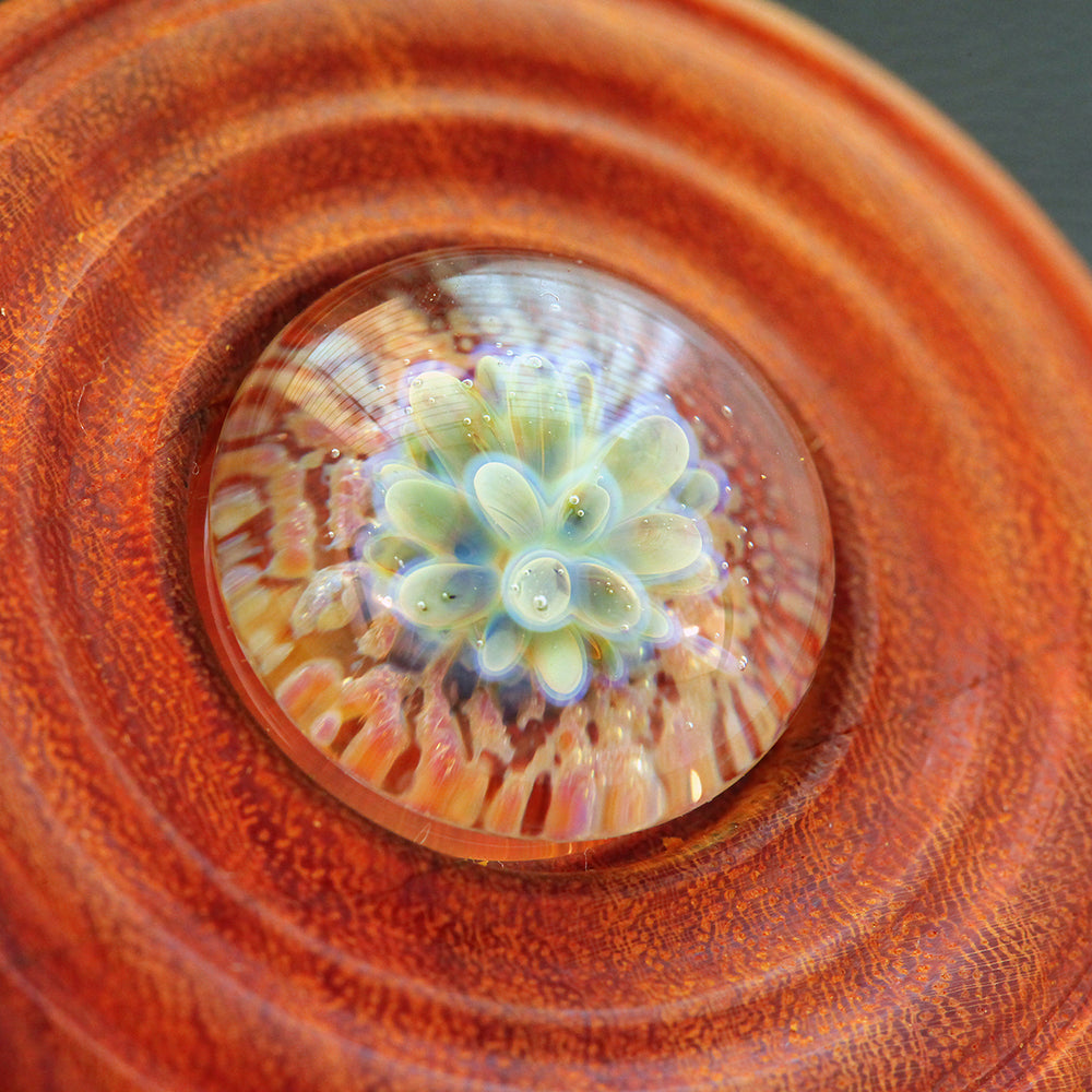 Radiant Implosion Wood & Glass Pendant