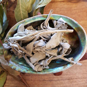 White Sage Smudge Loose Leaf (approx. 20g)