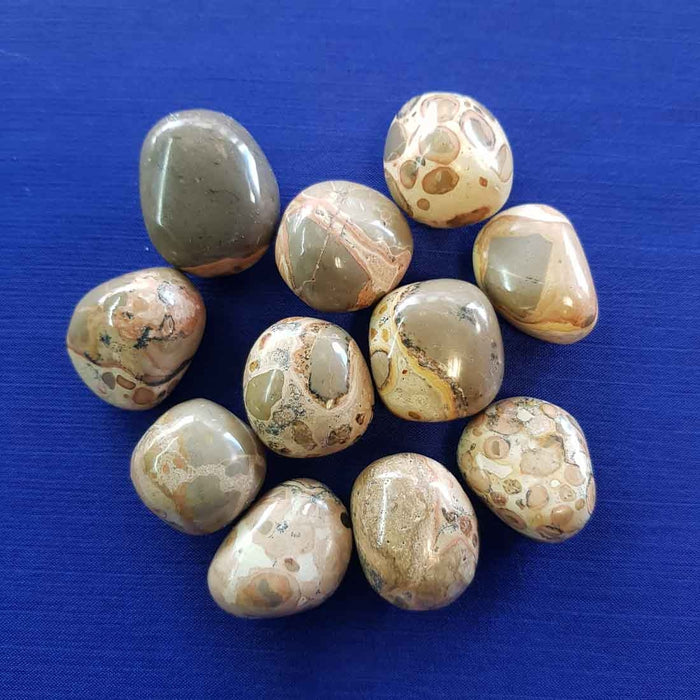 Rhyolite Tumble (assorted)