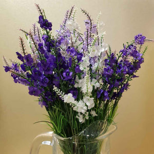 Lavender (assorted colours)