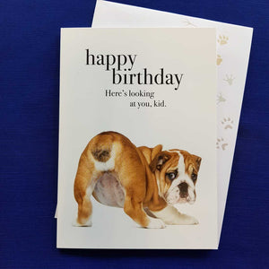Happy Birthday Heres Looking At You, Kid Greeting Card