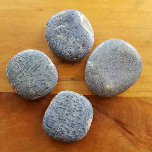 Blue Coral Flatstone. (assorted approx. 3.5x4cm)