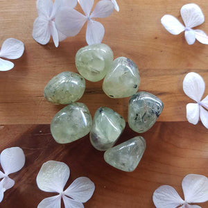 Prehnite with Inclusions Tumble. (assorted)