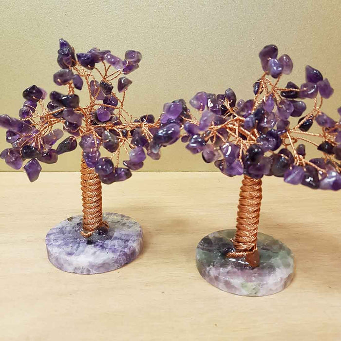 Amethyst Tree on Fluorite Base. (assorted approx. 11x9cm)