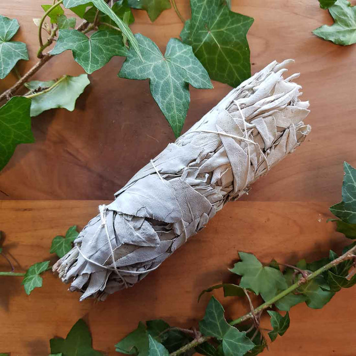 White Sage Smudge Stick (approx. 15x4.5cm)