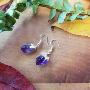 Amethyst Natural Point Earrings Dipped in White Metal (assorted)