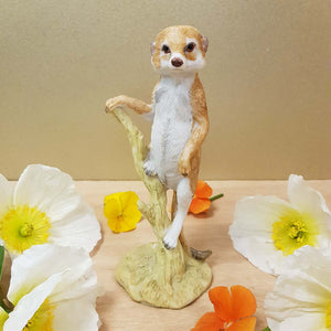 Meerkat Standing on Branch. (approx. 15x6cm)