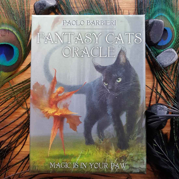 Fantasy Cats Oracle Cards (magic is in your paw) Guide Book & 23 cards