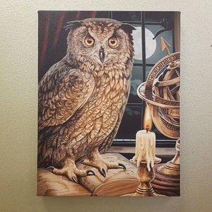Astrologer Owl Canvas (approx. 25x19cm)